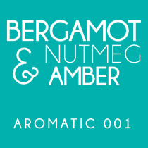 Diffuser - Aromatic 001 - Bergamot, nutmeg and amber