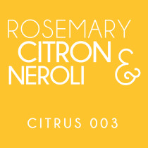 Diffuser - Citrus 003 - Citron, rosemary and neroli